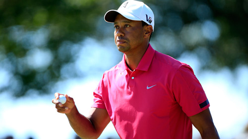 FedEx Cup: Cờ trong tay Tiger Woods - 1